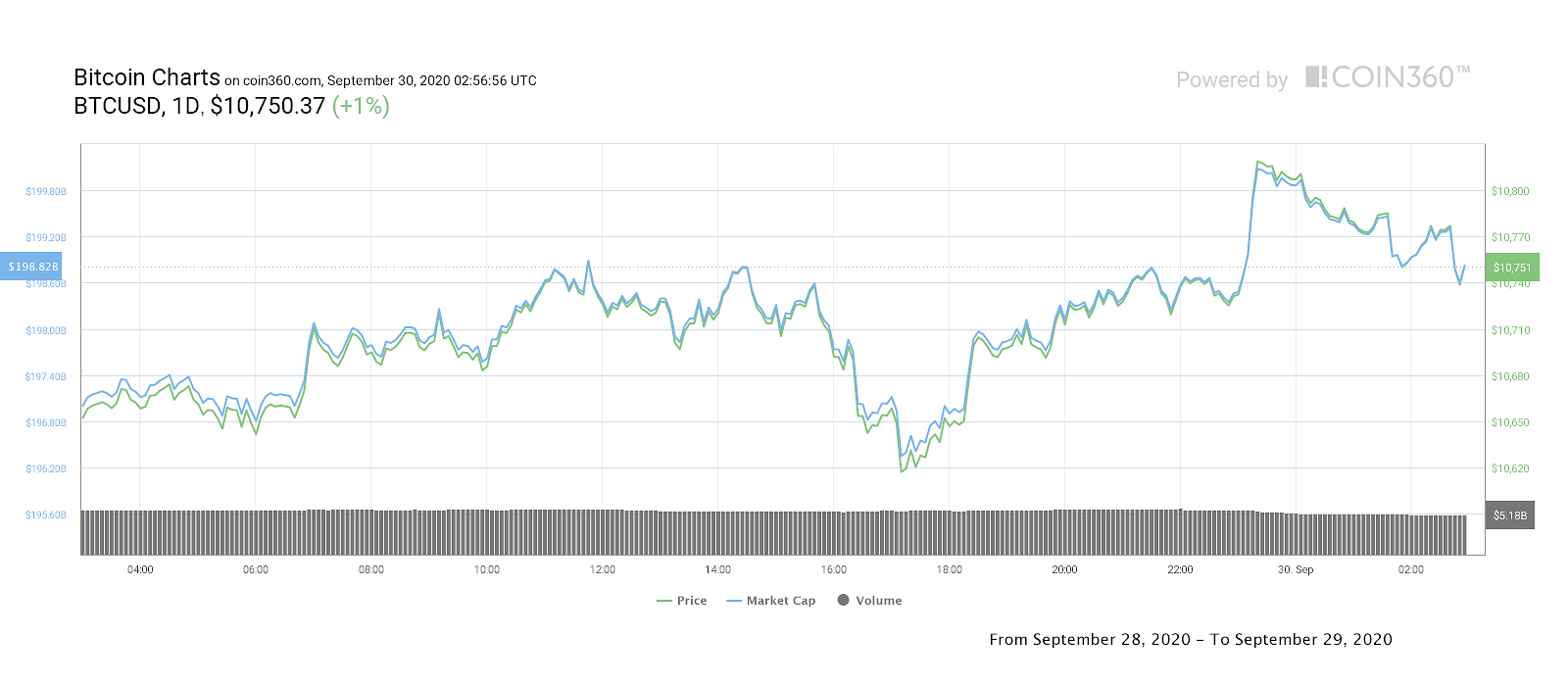 Bitcoin price daily performance